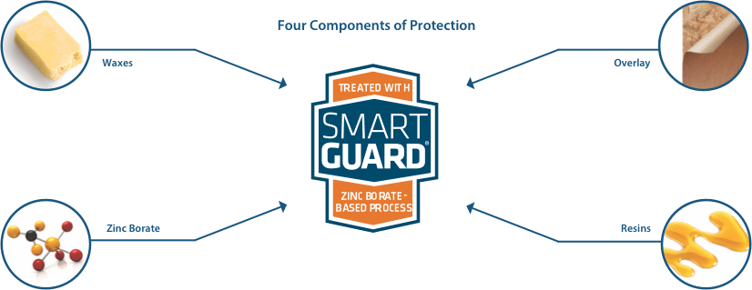 SmartGuard Proccess